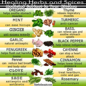 Healing Herbs and Spices (Photo Courtesy rawforbeauty.com)