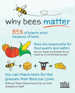 Why Bees Matter! (Photo Credit: Whole Foods Market)