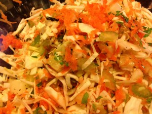 Creamy Coleslaw for your Picnic! (Photo Credit: Adroit Ideals)