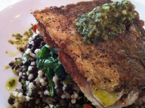 Bluefish over black beans and grains at Patsy's Restaurant (Photo Credit: Adroit Ideals)