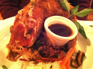 Whole red snapper is a specialty at Patsy's!  (Photo Credit: Adroit Ideals)