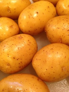 Golden potatoes are the foundation of my Dill Potato Salad with Greek Yogurt Dressing! (Photo Credit: Adroit Ideals)