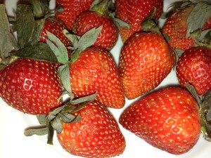 Berry-licious sweet organic strawberries! (Photo Credit: Adroit Ideals)