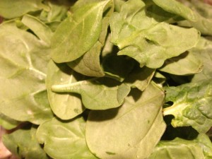 Fresh spinach leaves (Photo Credit: Adroit Ideals)