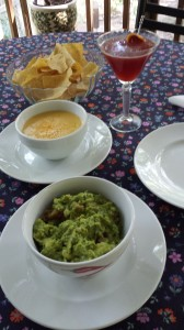 Guacamole, Chili con Queso, Chips, and a Cosmopolitan Martini!  (Photo Credit: Adroit Ideals)