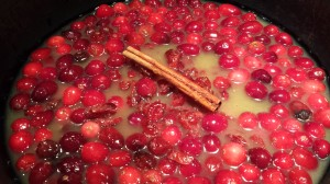 Cranberries (fresh and dried) with orange juice, honey, Calvados and a cinnamon stick!  (Photo Credit: Adroit Ideals)