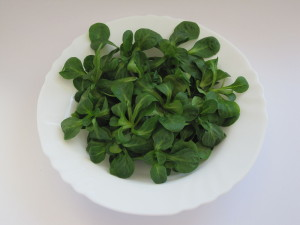 Mache or Lamb's Lettuce is a great bed for this salad. (Photo Credit: Wikipedia)