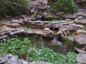 One of my garden pond projects. Moving boulders definitely helps burn calories! (Photo Credit: Adroit Ideals)