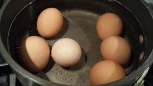 Bring the eggs to a boil (Photo Credit: Adroit Ideals)