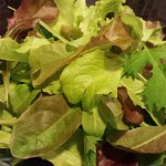 Baby Greens from my garden  (Photo Credit: Adroit Ideals)