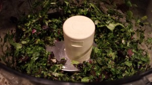 Pulse the food processor a few times to chop up the Spring mix (Photo Credit: Adroit Ideals)