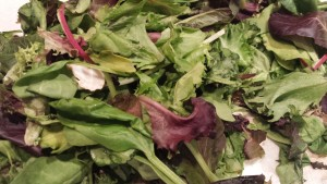 Spring Mix that is slightly past its prime (Photo Credit: Adroit Ideals)